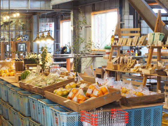長崎県産有機野菜