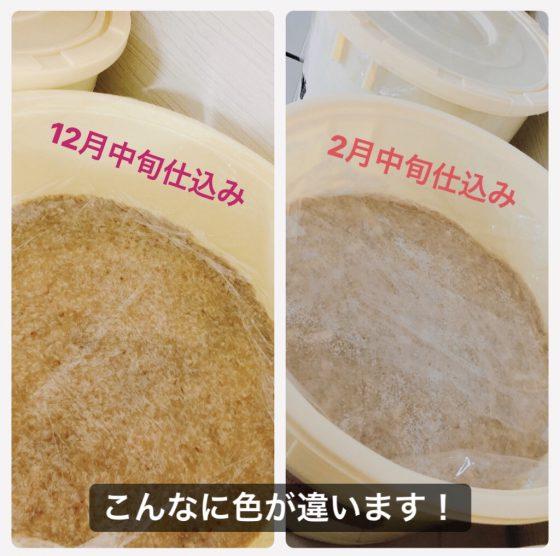 GOCHISOY おから味噌