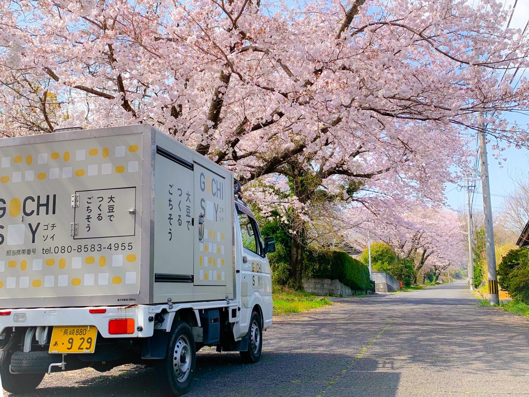 ゴチソイカーと桜